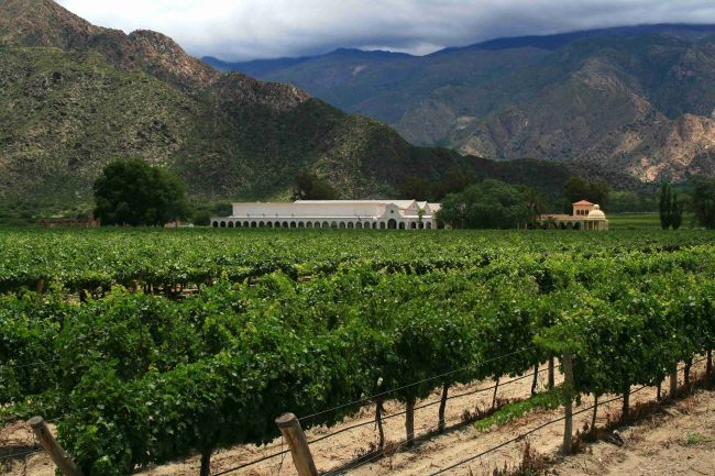 A winery in Cafayate, Salta, Argentina