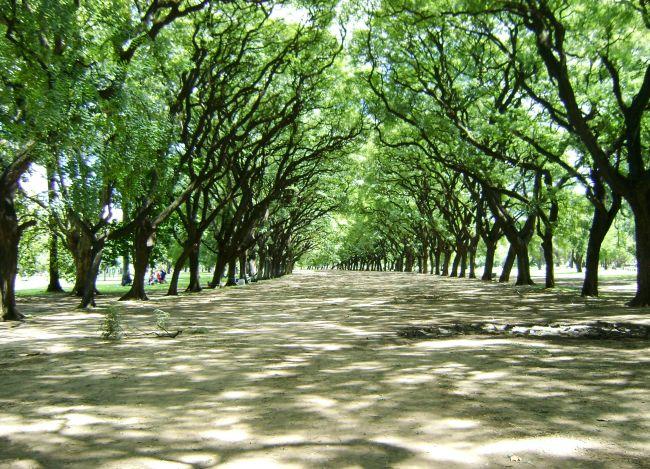 visa argentina bosques palermo.jpg